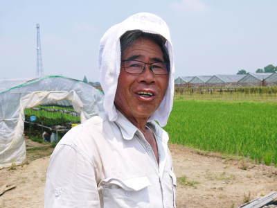 完熟紅ほっぺ イチゴは多年生植物!減農薬栽培の苗床の様子と栽培ハウスの片付け_a0254656_17132196.jpg