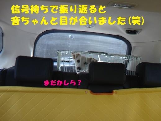 f0121712_15130940.jpg