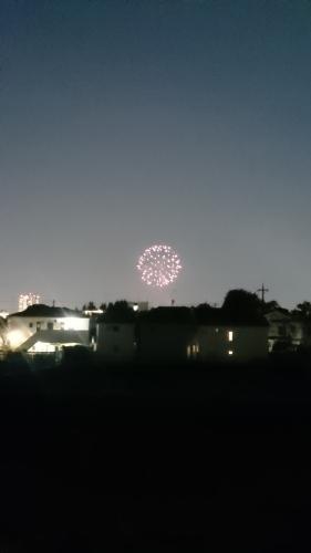 夏の夜空に咲く花_d0155439_08220928.jpg