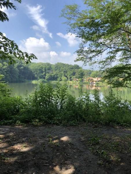 今年の夏は北軽井沢も暑い_c0341450_04480691.jpg