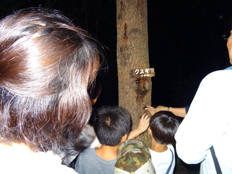 ZooCan企画「親子で『うみべの森里山体験&カブトムシ探し』」_c0108460_01151369.jpg