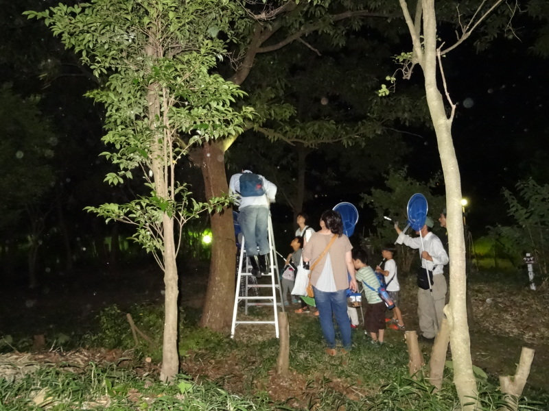 ZooCan企画「親子で『うみべの森里山体験&カブトムシ探し』」_c0108460_01165466.jpg