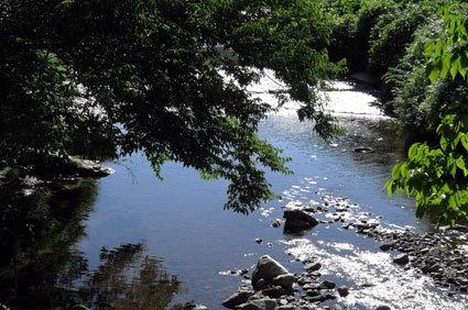 せめて日陰で川の流れでも_b0145296_18044081.jpg