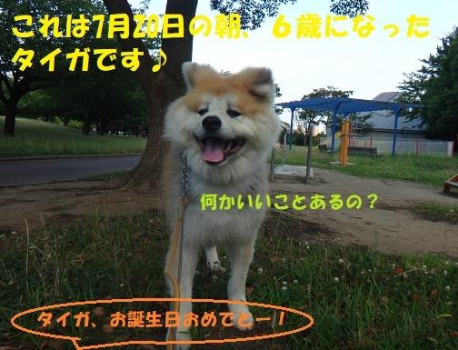 f0121712_12552353.jpg