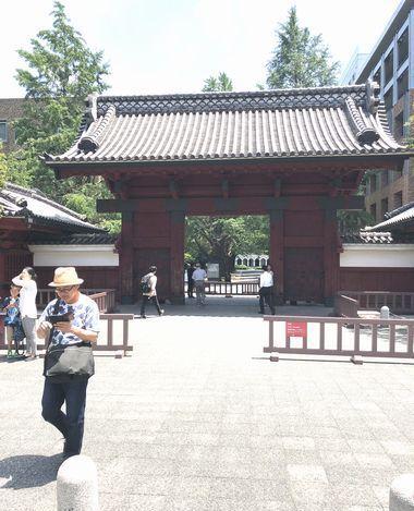 東京大学へ(ドクターXプロジェクト)_a0059217_13425201.jpg