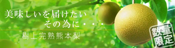 熊本梨 こだわりの樹上完熟梨『幸水』 先行予約の受付をスタート!初回出荷は7月31日(火)です!_a0254656_17310201.jpg