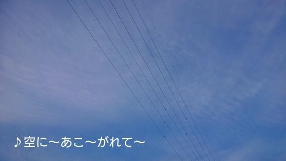 b0306158_14094926.jpg