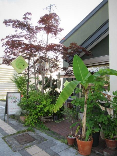 NOBUYUKI HAGIWARA CERAMICS EXHIBITION * カフェイーナ ギャラリー_f0236260_03230778.jpg