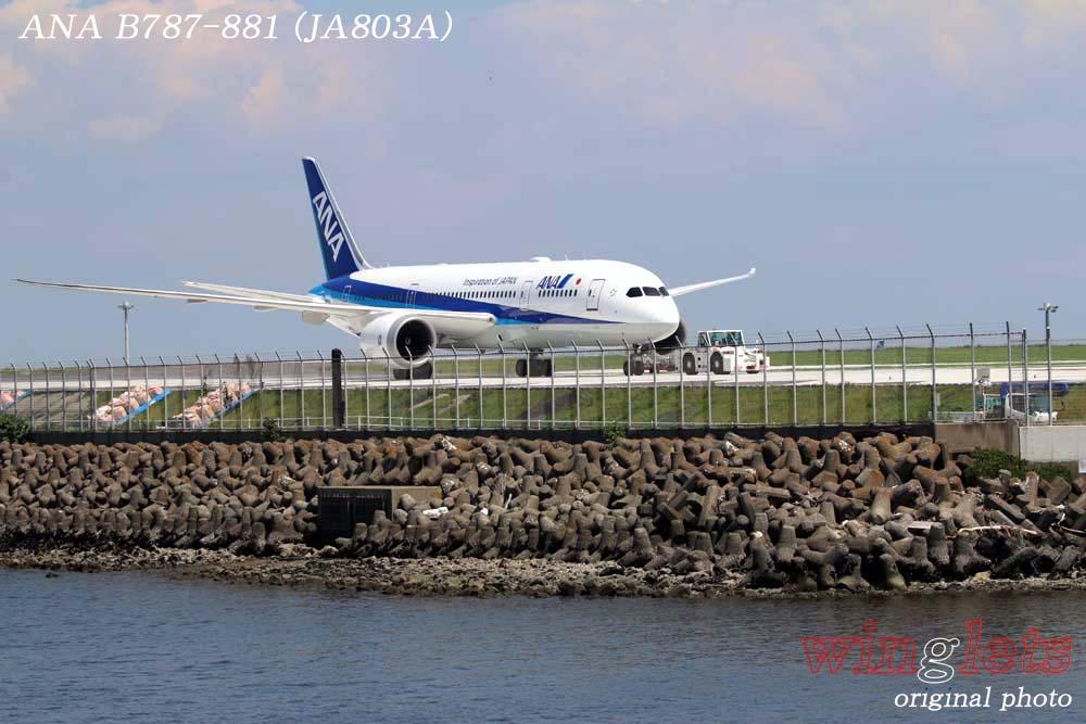 '18年 京浜島・つばさ公園レポート ・・・ ANA/JA803A_f0352866_22214328.jpg