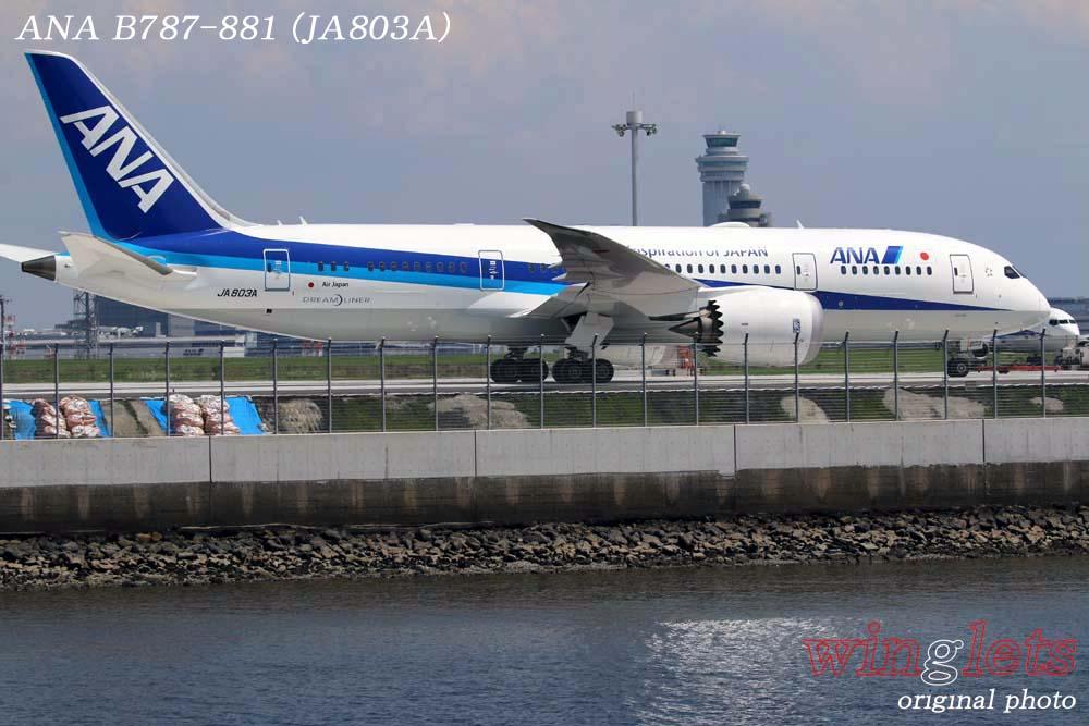 '18年 京浜島・つばさ公園レポート ・・・ ANA/JA803A_f0352866_2222123.jpg