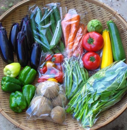 今週の野菜セット(7/24~7/28着)_c0110869_12311950.jpg