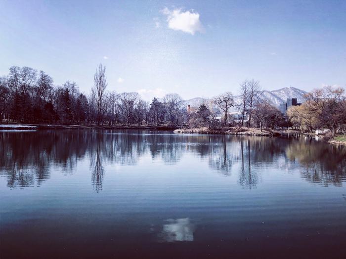 中央公園(札幌市中央区) / iPhone 8_c0334533_23472609.jpg