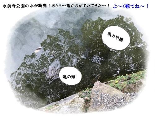 f0224350_13015648.jpg