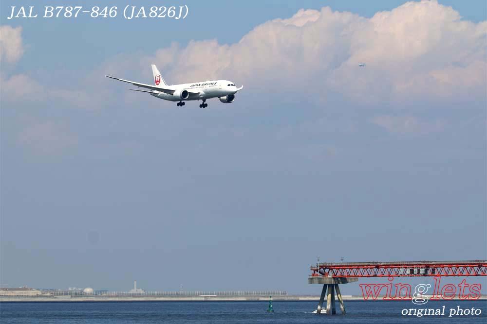 '18年 京浜島・つばさ公園レポート ・・・ JAL/JA826J_f0352866_2235961.jpg