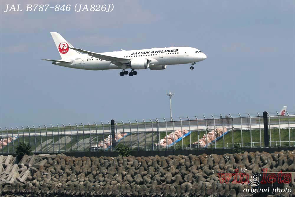 '18年 京浜島・つばさ公園レポート ・・・ JAL/JA826J_f0352866_2243312.jpg
