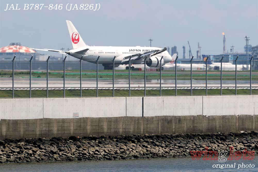 '18年 京浜島・つばさ公園レポート ・・・ JAL/JA826J_f0352866_2244349.jpg