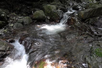榊原でいちばん涼しい流れはコチ谷の清流_b0145296_17484928.jpg
