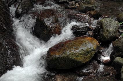 榊原でいちばん涼しい流れはコチ谷の清流_b0145296_17485151.jpg