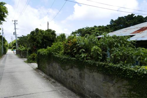 海界の村を歩く 東シナ海 小宝島_d0147406_17245606.jpg