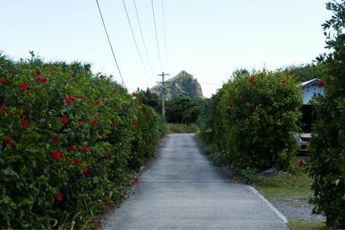 海界の村を歩く 東シナ海 小宝島_d0147406_18270099.jpg