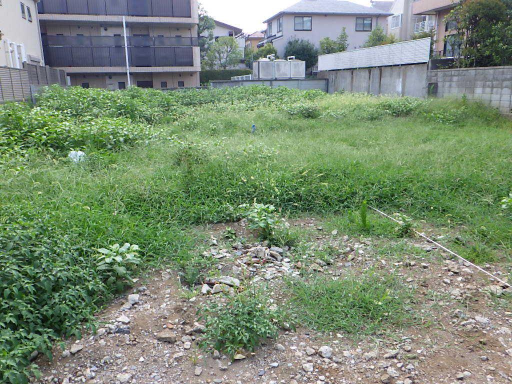 草刈り_e0215910_09245966.jpg
