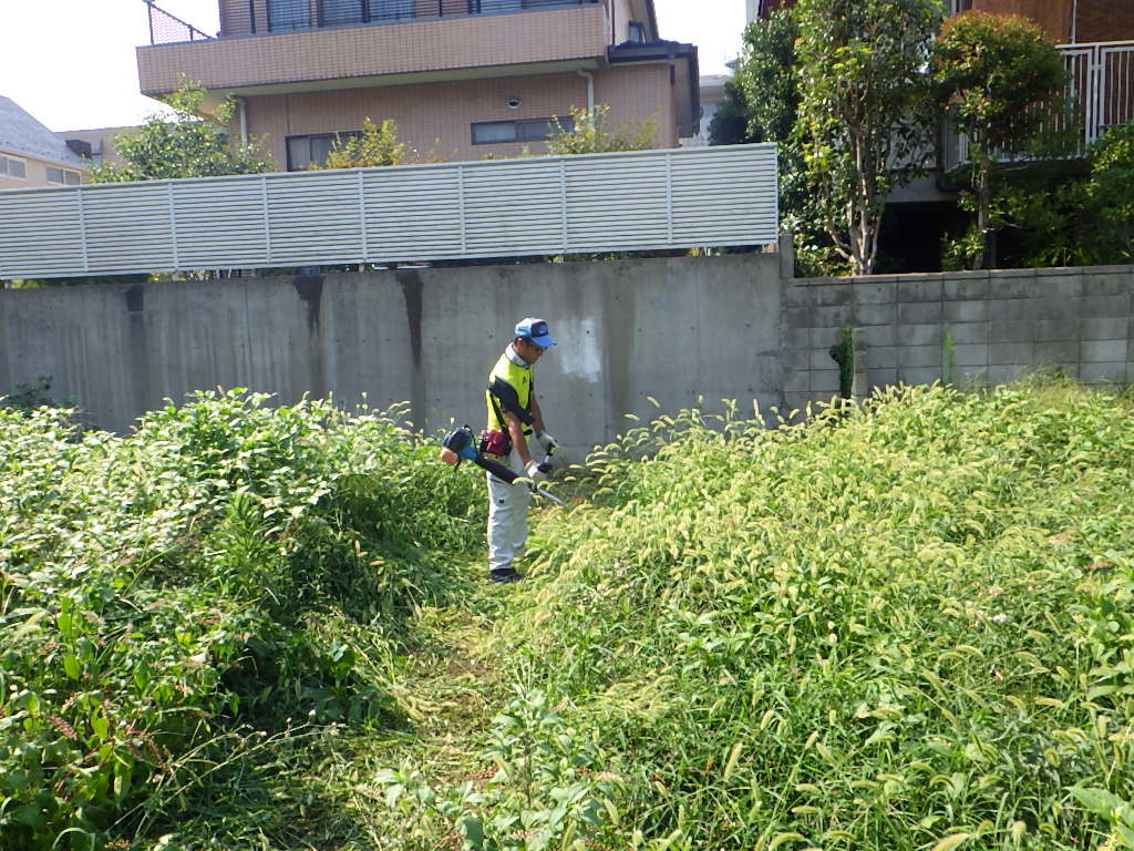 草刈り_e0215910_09253676.jpg