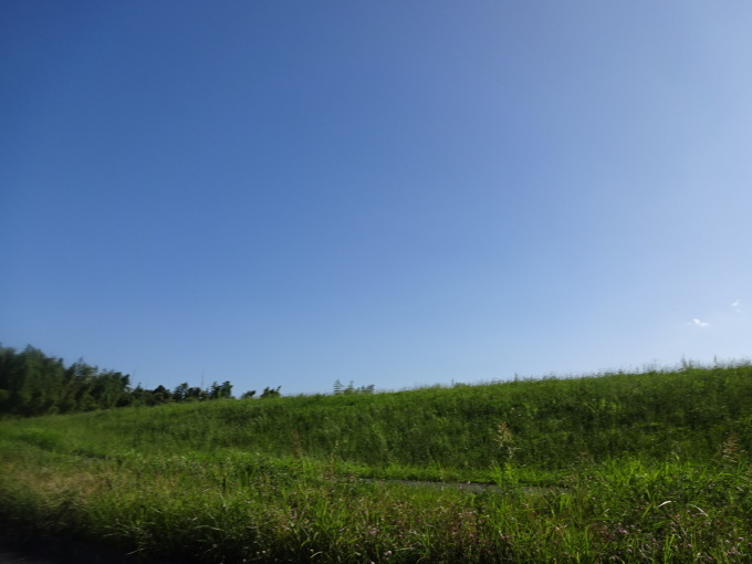 チャリで牧場へ!2_b0210688_18104191.jpg