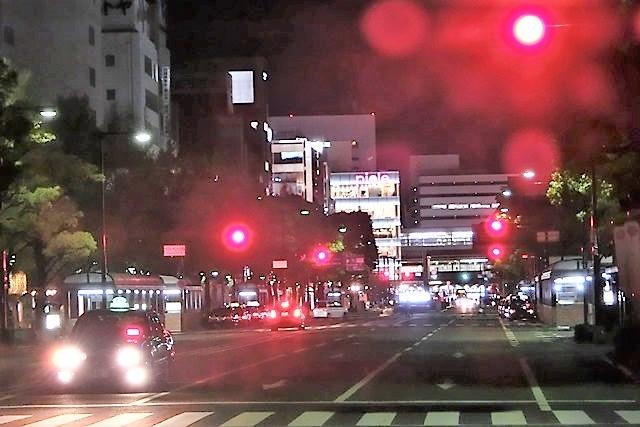 藤田八束のお城訪問@白鷺の城姫路城、世界文化遺産姫路城をもっと観光に利用して欲しい・・・姫路市への観光客からの意見_d0181492_09394323.jpg