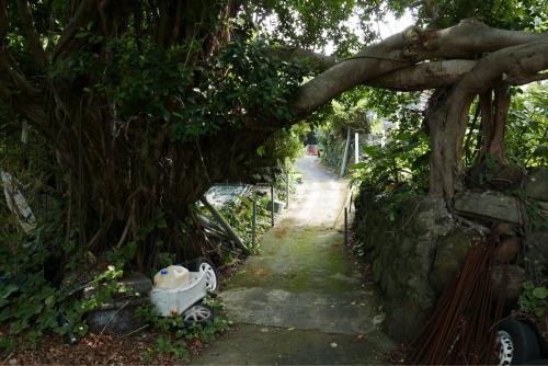 海界の村を歩く 東シナ海 悪石島_d0147406_16253326.jpg