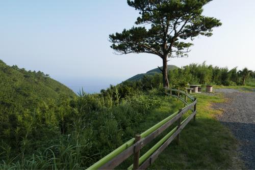 海界の村を歩く 東シナ海 悪石島_d0147406_18225476.jpg
