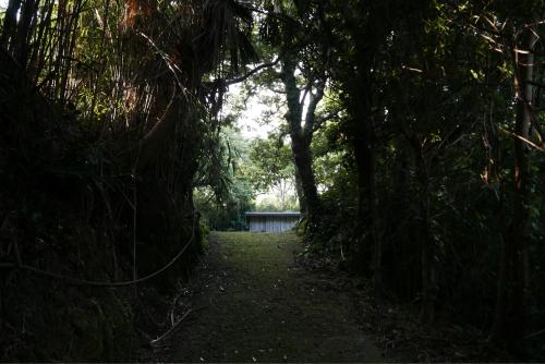 海界の村を歩く 東シナ海 悪石島_d0147406_18230499.jpg
