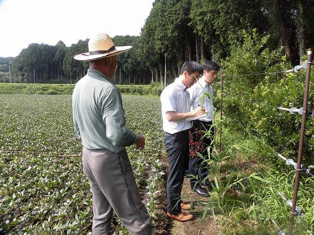 全国農福連携推進協議会の会長・濱田健司さんと回った富士市の「農福連携」の取り組み_f0141310_08175223.jpg