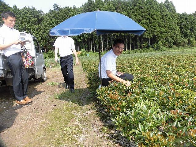 全国農福連携推進協議会の会長・濱田健司さんと回った富士市の「農福連携」の取り組み_f0141310_08175879.jpg