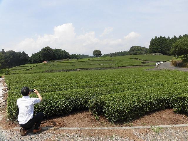 全国農福連携推進協議会の会長・濱田健司さんと回った富士市の「農福連携」の取り組み_f0141310_08182258.jpg