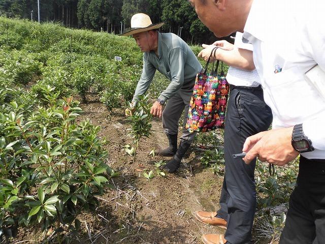 全国農福連携推進協議会の会長・濱田健司さんと回った富士市の「農福連携」の取り組み_f0141310_08183170.jpg