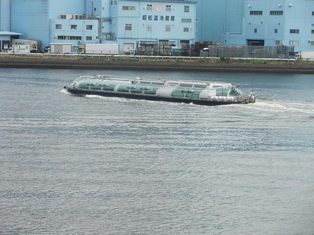 竹芝桟橋からの風景_e0378686_17490653.jpg