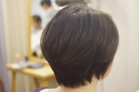 夏休みのお知らせ_d0224931_18091828.jpg