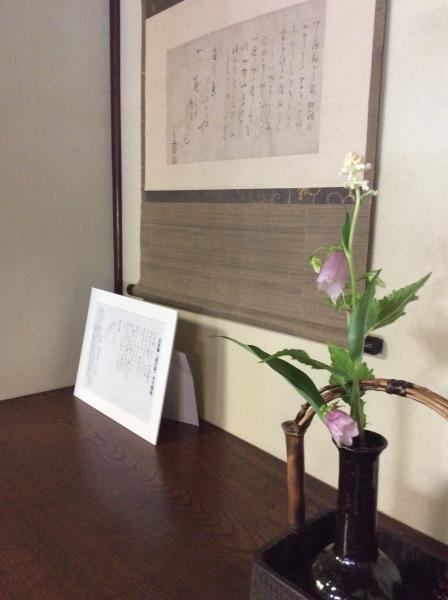 「芭蕉の舘」の草花③_f0289632_19151346.jpg
