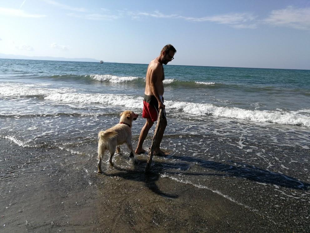 ラーラ初体験!犬専用ドッグビーチ_f0106597_23514852.jpg