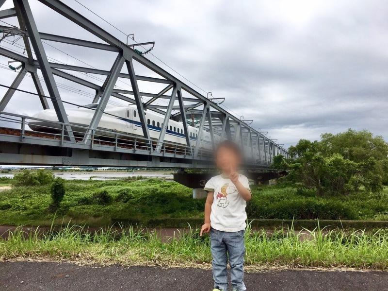 大井川橋を通過する東海道新幹線_d0367998_12341166.jpg