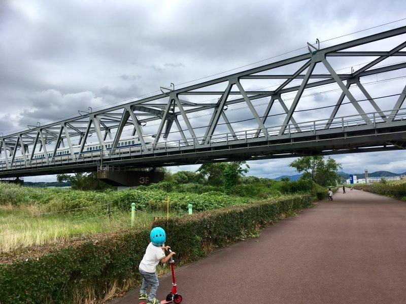 大井川橋を通過する東海道新幹線_d0367998_12355226.jpg