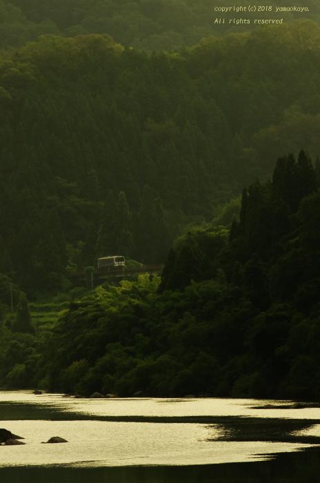 川の淵近くを_d0309612_01014236.jpg