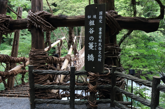 四国旅行 - 1 -_f0348831_06373238.jpg
