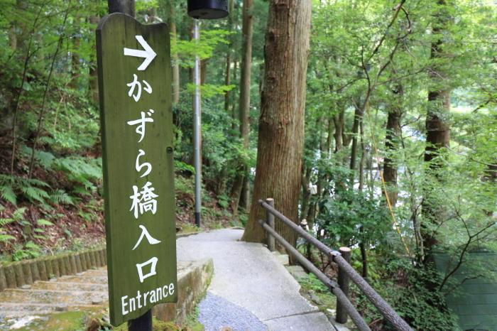 【祖谷のかずら橋】四国旅行 - 2 -_f0348831_16283274.jpg