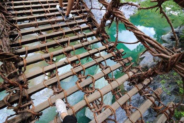 【祖谷のかずら橋】四国旅行 - 2 -_f0348831_16290048.jpg