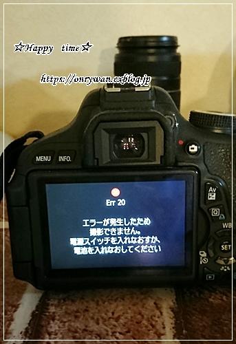 f0348032_18143970.jpg
