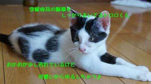 d0393041_22580425.jpg
