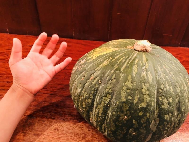 デカイね、ありがたやかぼちゃ。&7月30日(月)のランチメニュー_d0243849_15502035.jpeg