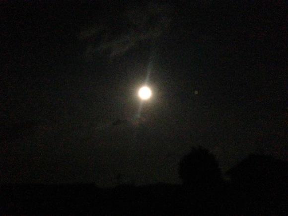 満月と月食のギフト&アート***_e0290872_22320356.jpg