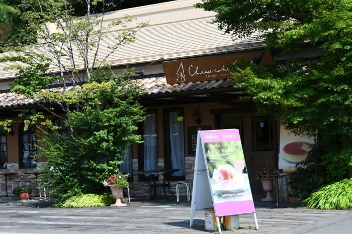 富士五湖周辺いろいろ_a0127090_16114205.jpg